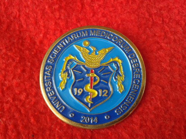 Festett címeres kitűző